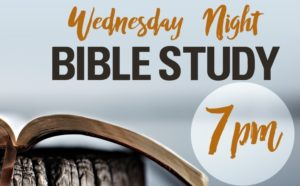 Wednesday Summer Bible Study