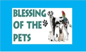 Pet Blessing - St. Francis Day